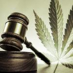 narkotyki prawo